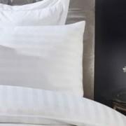 Jastučnice